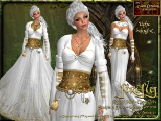 costume pic 3